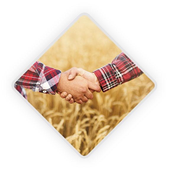 Wspieranie decyzji rolników