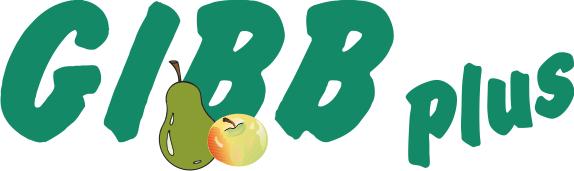 gibb-logo