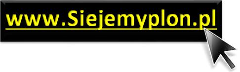 siejemyplon.pl