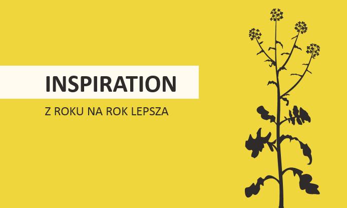 rzepak odmiany inspiration