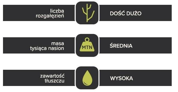 Komponenty plonu odmiany rzepaku Berny