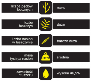 schemat budowy plonu